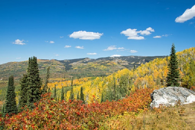 Exploring Routt County